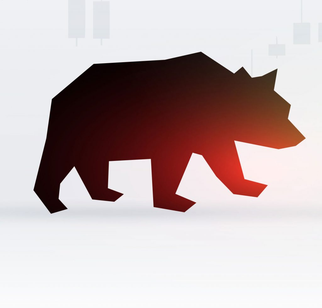 Bear Crypto